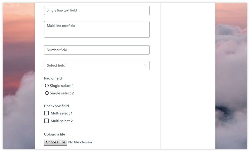 Checkout page after custom fields