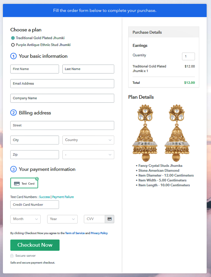 Preview Multiplan Checkout Page - Sell Earrings Online
