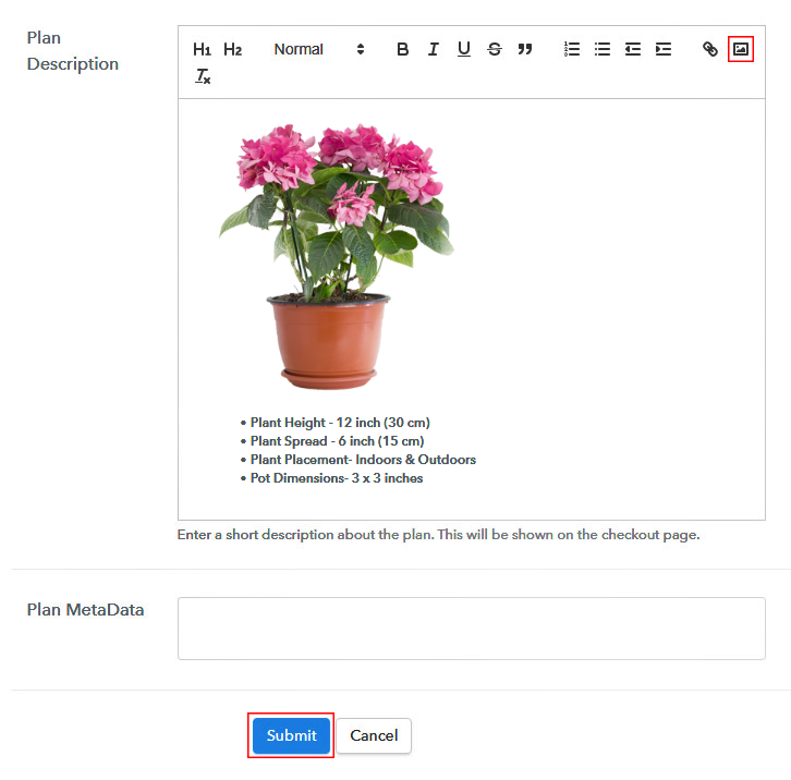 Add Image & Description to Sell Artificial Plants Online