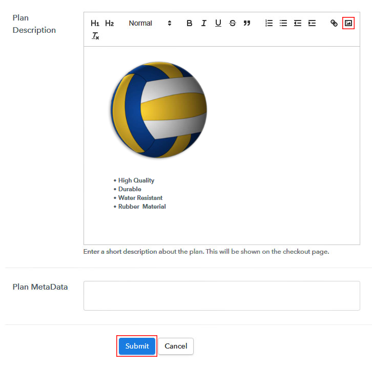 Add Image & Description to Sell Beach Volleyballs Online