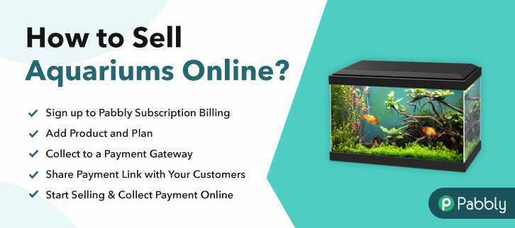 How to Sell Aquariums Online