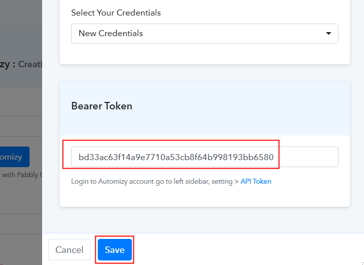 Paste API Token in Pabbly Connect