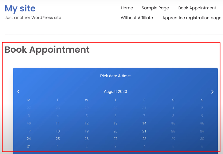 Embed Booking Calendar on WordPress to Connect WP Amelia to Google Calendar and Gmail