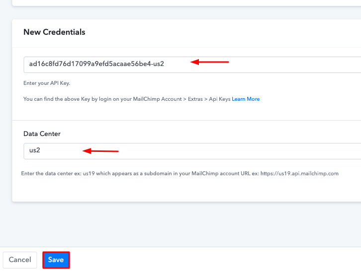 Paste the API Key Mailchimp