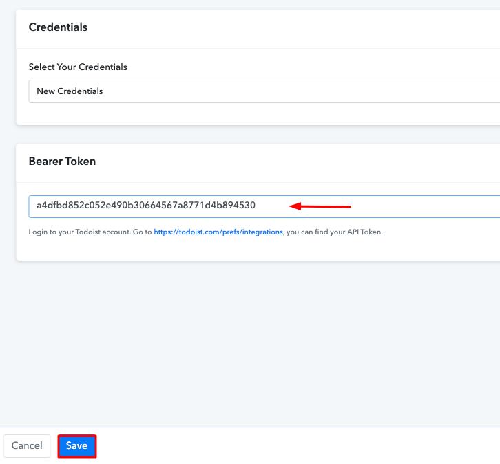 Paste the API Token Todoist