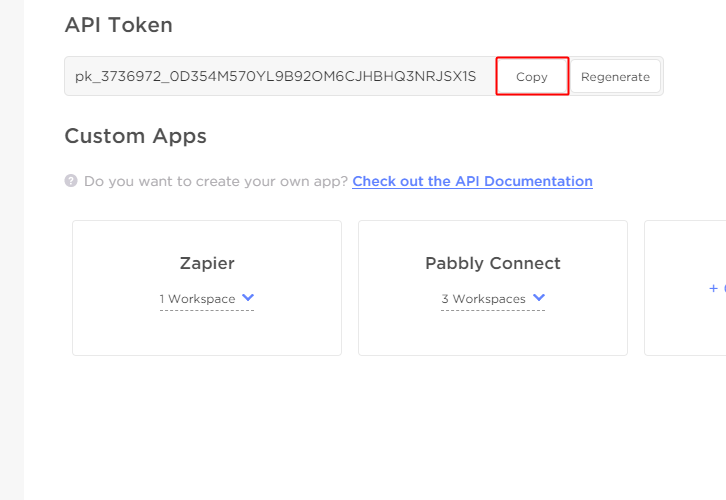 Copy the API Token
