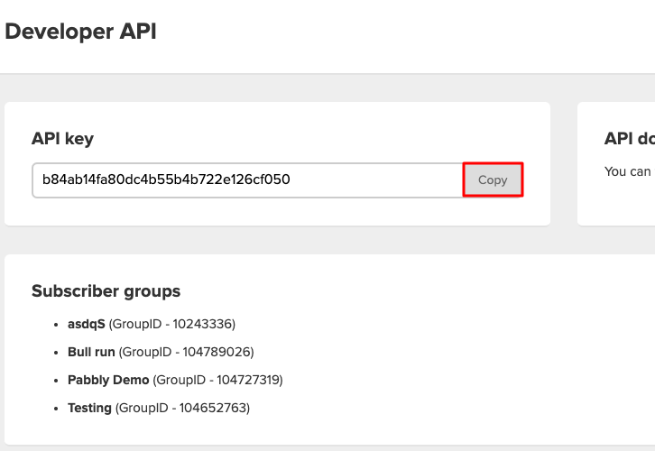 Copy the API Key Add Stripe Customers to a Group of MailerLite Subscribers