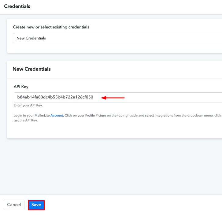 Paste the API Key Add Stripe Customers to a Group of MailerLite Subscribers