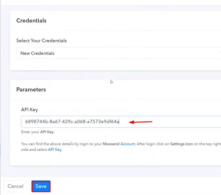 Paste the API Key