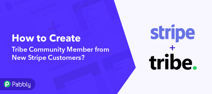 How to Create Tribe Community Member from New Stripe Customers