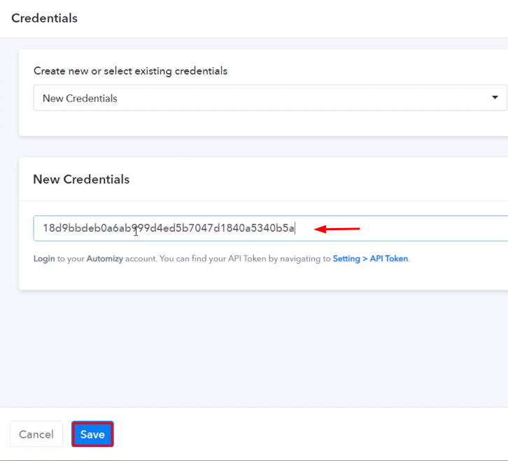 Paste the API Key Automizy