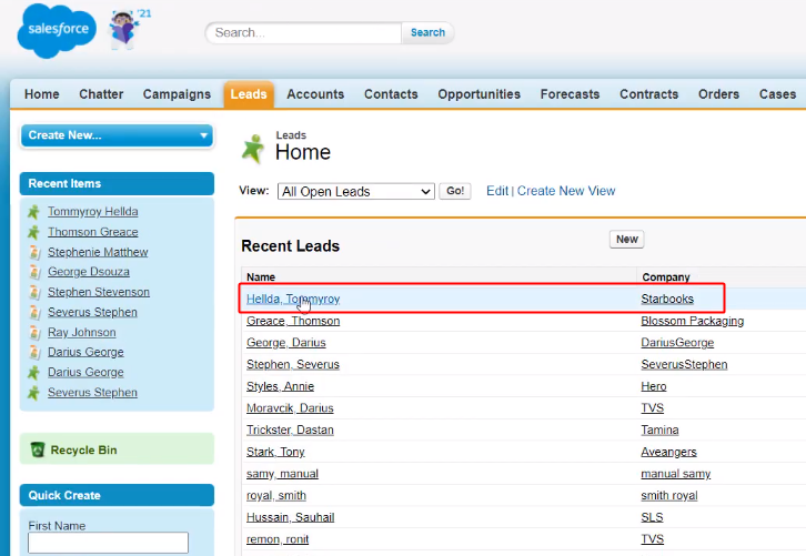 Lead Entry on Salesforce