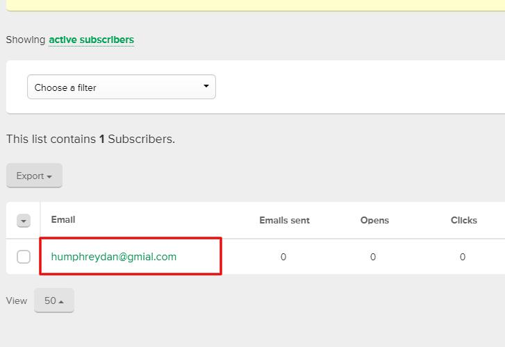 Check Response in MailerLite Dashboard