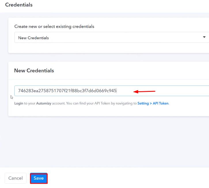 Paste the API Token Automizy