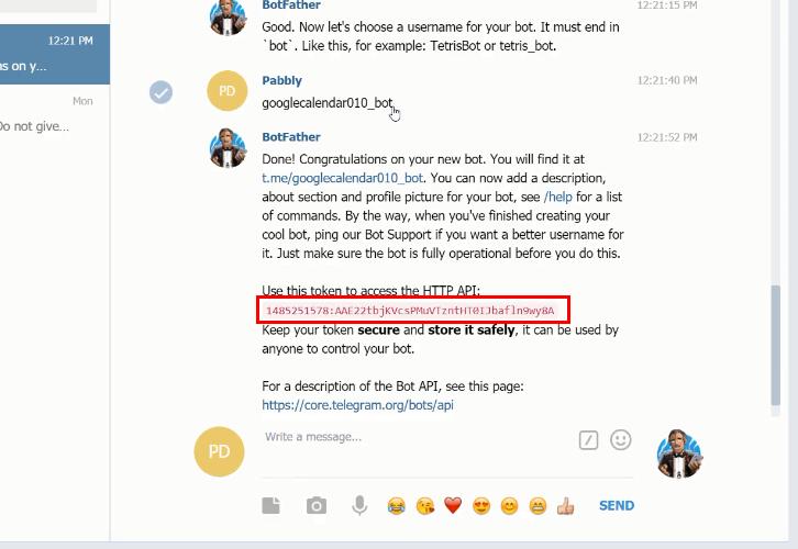 Copy API Token