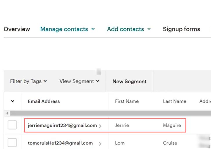 Check Response in MailChimp Dashboard