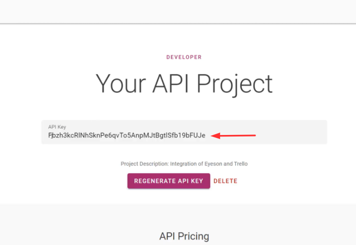 Copy the API Key