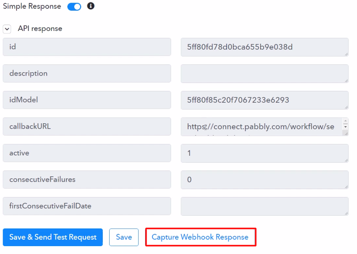 Capture Webhook Response