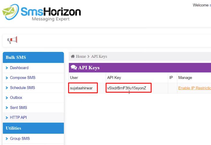 Copy the API Key SmsHorizon