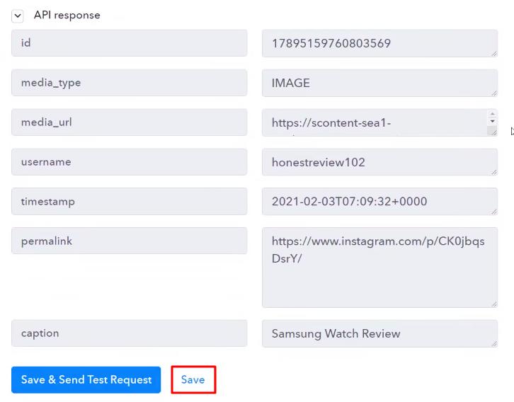 Save API Response Instagram