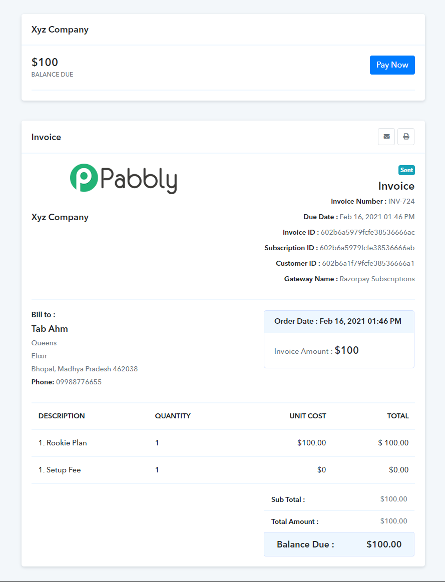 paynow_button_invoice1