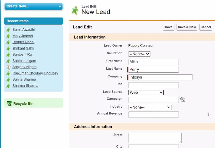 Add Lead Details Salesforce