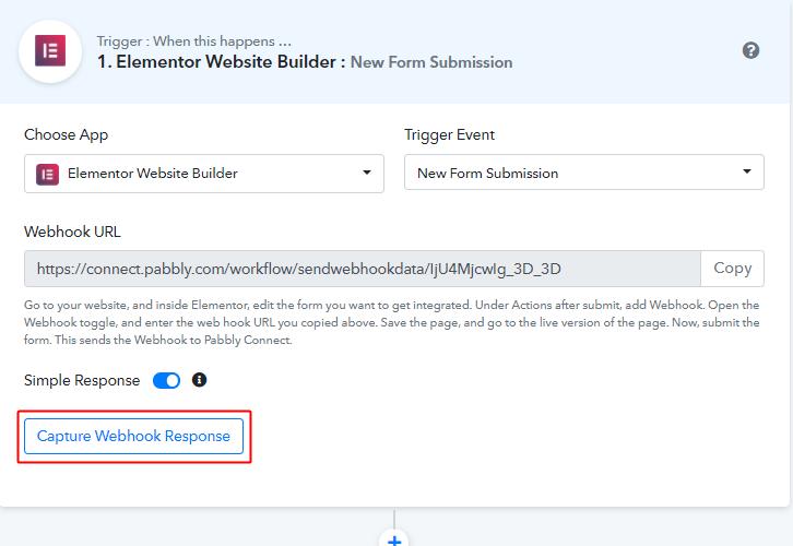 Capture Webhook Response for Elementor to Google Sheets