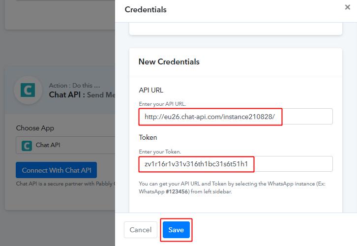 Paste Chat API URL & Token