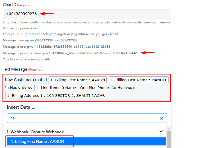 Paste Chat ID and Draft Message to Send Telegram Notification for New WooCommerce Orders