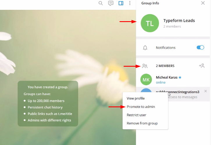 Telegram Settings to Send Telegram Messages on Form Submissions